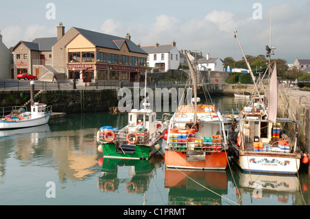 Belfast, Nordirland Kilkeel, Angelboote/Fischerboote vertäut im Hafen - Stockfoto