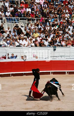 Stierkampf in der Les Arènes Roman Arena während der Feria du Riz, Reis-Festival, Arles, Provence, Frankreich. - Stockfoto