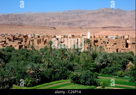 Tinghir Oase. Dades Tal. Todra Schlucht. Marokko. Afrika - Stockfoto