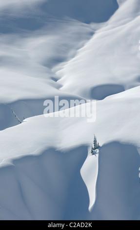 Winter-Licht und Schatten, die Erstellung von Mustern auf Schnee bedeckt alpine Pisten in der Mount Baker Wildnis, - Stockfoto