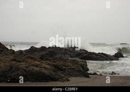 Welle gegen Korallen Felsen am Strand zerschlagen. - Stockfoto