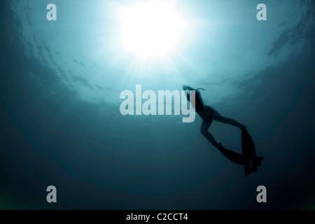 Die Sonne begrüßt zurück ein Freediver aus den Tiefen des australischen Great Barrier Reef. - Stockfoto