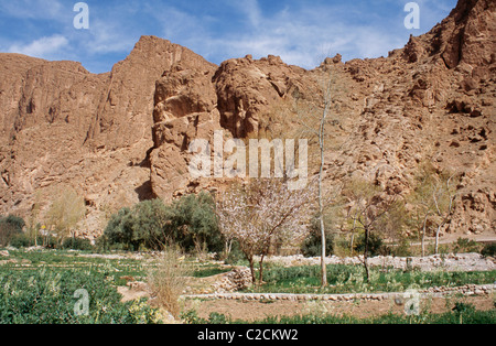 Tizdi Dorf mittleren Atlas Marokko - Stockfoto