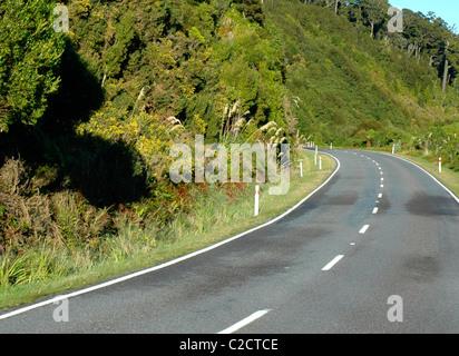 Westland Tai Pountini National Park, West Coast, Neuseeland