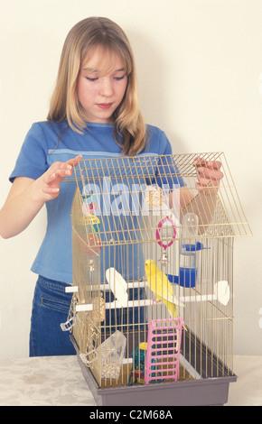 junges Mädchen, Reinigung von Vogelkäfig - Stockfoto