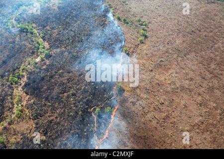 Buschfeuer in Kimberley, Westaustralien, von oben - Stockfoto