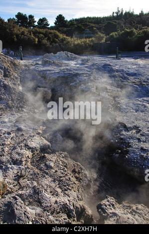 Dämpfen Schlammpfützen, Hell's Gate und WaiOra Spa, Rotorua, Bucht von viel Region, Nordinsel, Neuseeland - Stockfoto