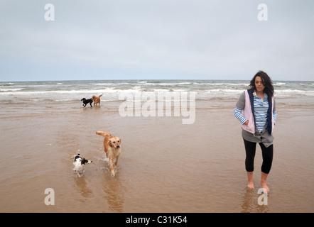 Ein Teenager-Mädchen gehen mit ihren Hunden am Gewässerrand, Holkham Beach, North Norfolk Küste UK - Stockfoto