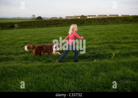 Junges Mädchen zu Fuß braun Border-Collie Hund an der Leine durch Feld. Foto: Jeff Gilbert - Stockfoto