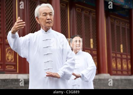 Älteres paar praktizieren Tai Chi, Temple of Heaven - Stockfoto