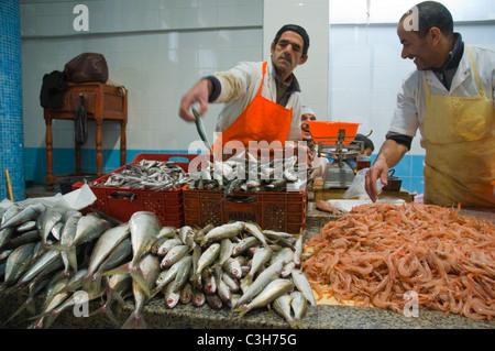 Marche Central de Poissons Fischmarkt bei Le Grand Socco quadratische Tanger Marokko in Nordafrika Stockfoto