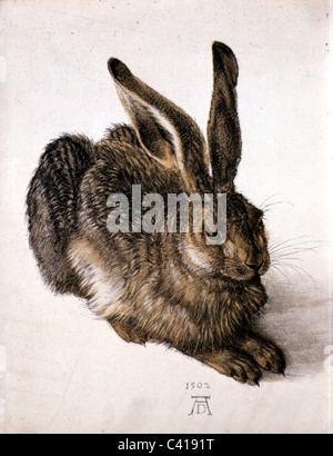 "Bildende Kunst, Dürer, Albrecht (1471-1528), ""Feldhase"" (Young Hare), Aquarell, 1502, Albertina, Wien, Österreich, - Stockfoto"