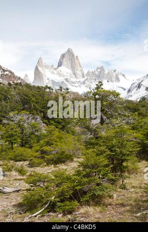 Fitz-Roy-massiv, Parque Nacional Los Glaciares, Patagonien, Argentinien - Stockfoto