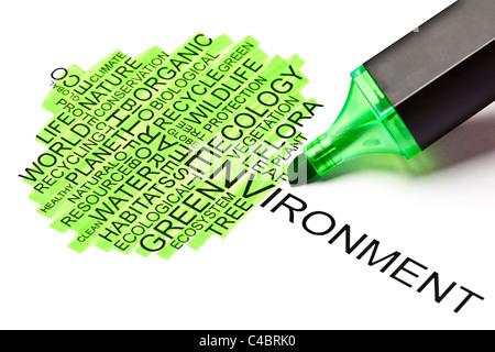 Hergestellt aus verwandten Wörtern in der Form eines Baumes mit grünen Filzstift Ökologie-Konzept - Stockfoto