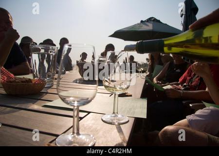 Weinprobe im Weinberg, Stellenbosch, Südafrika - Stockfoto