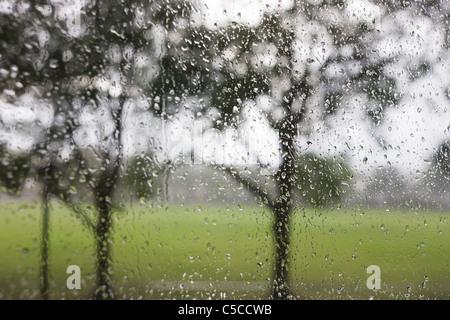 Regentropfen auf einer Glasscheibe mit einem städtischen Park Hintergrund Fenster. - Stockfoto