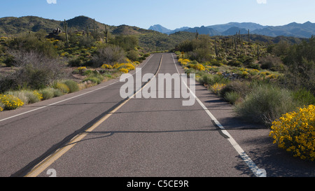 North Lake Road, Bartlett Lake, Arizona, Panorama-Bild - Stockfoto