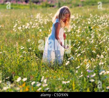 Junge blonde Mädchen in die Sommer-Blumenwiese - Stockfoto