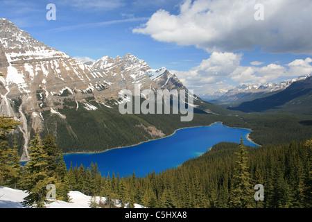 Peyto Lake, Alberta, Kanada. Von Bogen-Gipfel aus dem Icefields Parkway betrachtet. - Stockfoto