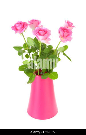 Bouquet von rosa Rosen in Vase vor weißem Hintergrund Stockfoto