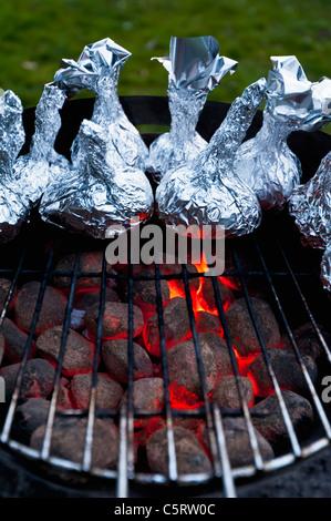 Deutschland, Nordrhein-Westfalen, Düsseldorf, Nahaufnahme von Zwiebeln in Alufolie auf den Grill - Stockfoto
