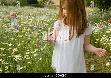Mädchen Blumen pflücken im Feld - Stockfoto