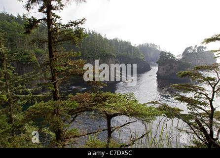 Felsigen Klippe Küste auf Olympic National Park Küstenlinie, Olympic Peninsula Cape Flattery Washington State Seestück - Stockfoto