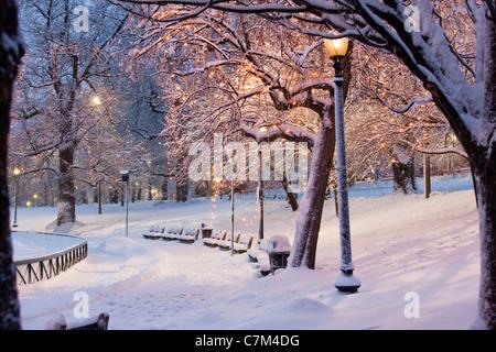 Schneebedeckte Bäume mit Laternen beleuchtet in einem öffentlichen Park Boston Common, Boston, Massachusetts, USA - Stockfoto