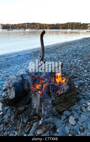 Ein Feuer für einen Grillabend am Ufer des Helford River nahe Durgan, Cornwall - Stockfoto