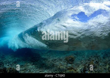 Welle bricht am Riff, Palikir Pass, Pohnpei, Caroline Inseln, Mikronesien - Stockfoto