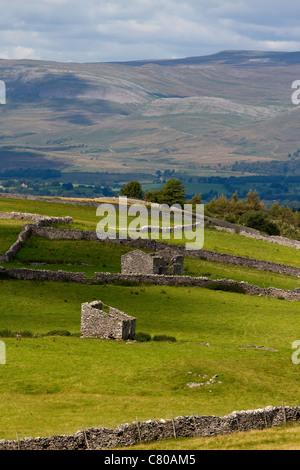 Steinige Kalk Scheunen, die in der August Landschaft und Landschaft Nateby, nr Kirkby Stephen, Cumbria, Großbritannien - Stockfoto