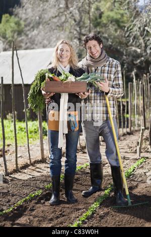 Paar Kommissionierung Gemüse im Garten - Stockfoto