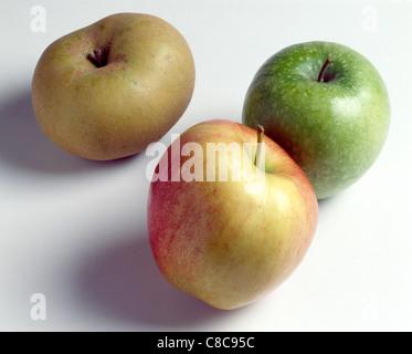 Fahre, Granny Smith und Royal Gala Äpfel Stockfoto