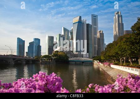Singapur, Asien, Innenstadt, Skyline, Blöcke von Wohnungen, Hochhäuser, Wolkenkratzer, Blumen, Park, Ufer - Stockfoto