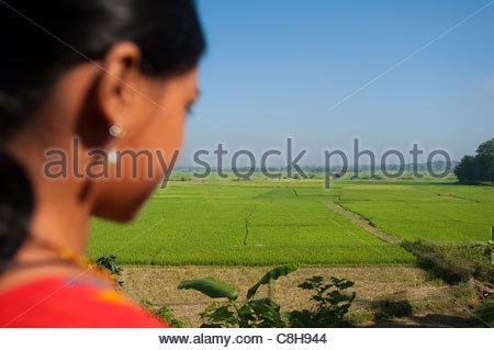 Eine Mädchen blickt auf ein Flickenteppich von Reisfeldern. - Stockfoto