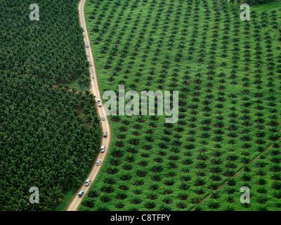 Luftaufnahme von Johor Landschaft mit einer Straße laufen durch das Grün. - Stockfoto