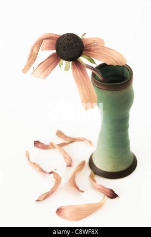 Rosa Blume in grüner Vase