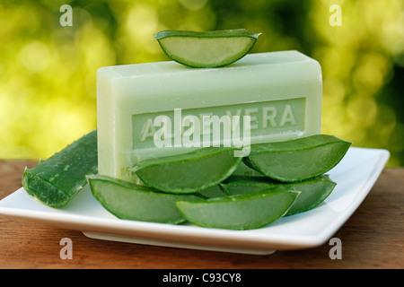 Aloe Vera Pflanze Seife zu verbrennen. - Stockfoto