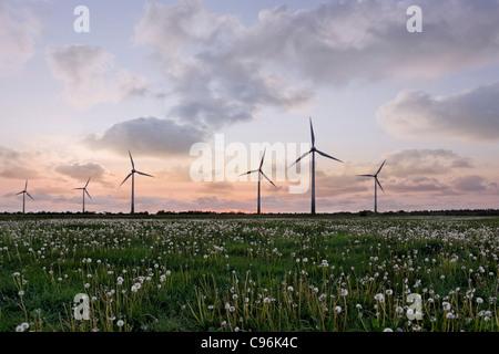 Windkraftanlagen, Silhouette von Windkraftanlagen im Sonnenuntergang, Windkraftanlage, Felder, Windpark - Stockfoto