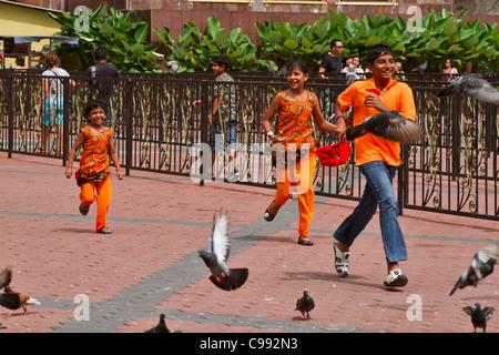 Indische Kinder gekleidet in festliche Kleidung Chase Tauben im Tempel Bezirk in Kuala Lumpur Batu Höhlen. - Stockfoto