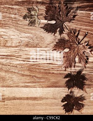 herbstlaub grenze ber nat rliche holz hintergrund alte trockene blattform natur im herbst. Black Bedroom Furniture Sets. Home Design Ideas