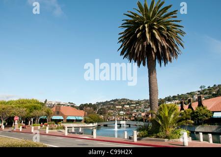 Tiburon San Francisco Kalifornien Vereinigte Staaten von Amerika Amerikaner / USA Stadt - Stockfoto