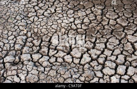 Chemische cracken Lehmboden Muster. Andhra Pradesh, Indien. - Stockfoto