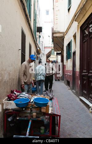 Fischverkäufer in Petit Socco, Kasbah, Tanger, Marokko, Nordafrika Stockfoto
