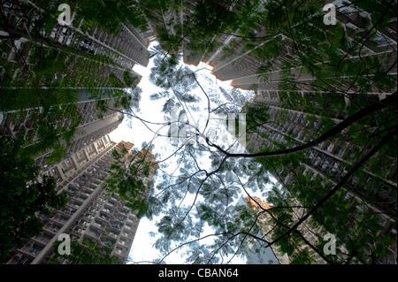 Niedrigen Winkel Ansicht über Apartment-Hochhäuser und Bäume in Hong Kong, Mong Kok - Stockfoto