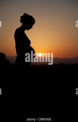 Silhouette einer schwangeren Frau bei Sonnenuntergang. - Stockfoto