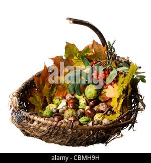 Weidenkorb mit gefallene Herbstlaub, Kastanien und Duftspiel, isoliert - Stockfoto