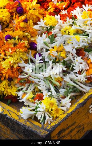 Indische blumen Girlanden für Verkauf erfolgt an einem indischen Markt. Andhra Pradesh, Indien - Stockfoto
