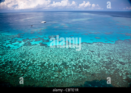 Luftaufnahmen von Knuckle Reef, aus dem das Great Barrier Reef in den Whitsundays, Queensland, Australien. - Stockfoto