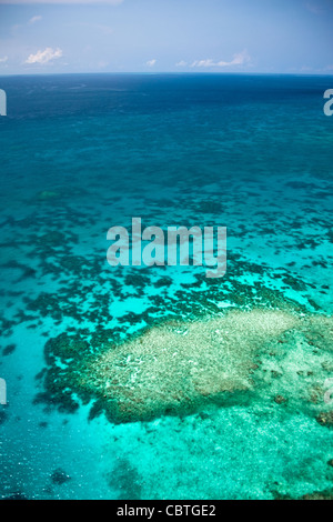 Luftaufnahmen der spektakuläre Great Barrier Reef in der Nähe der Whitsunday Islands in Queensland, Australien.
